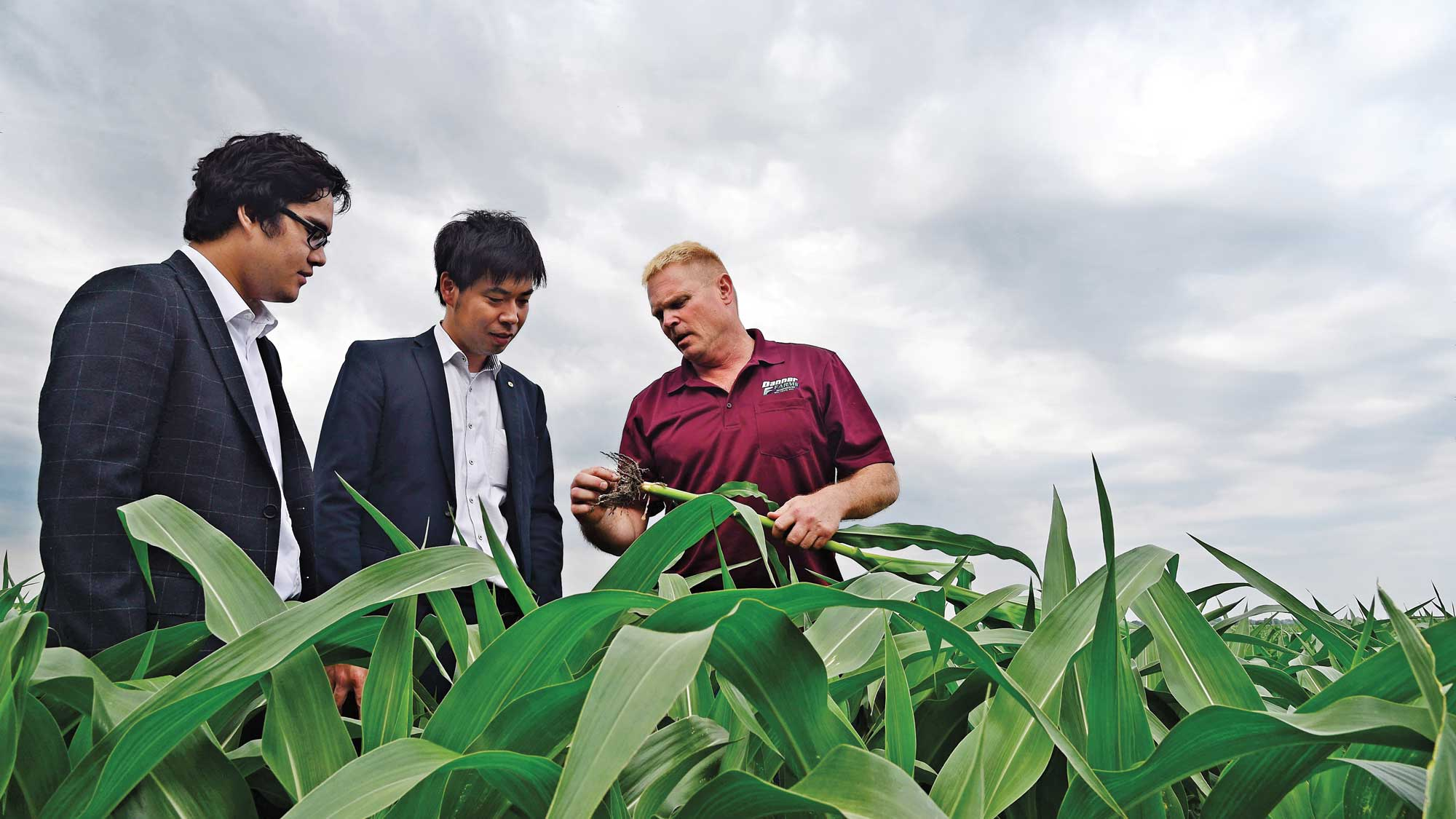 Iowa corn grower and customers from Japan Corn Starch Co. discuss identity-preserved corn in a corn field