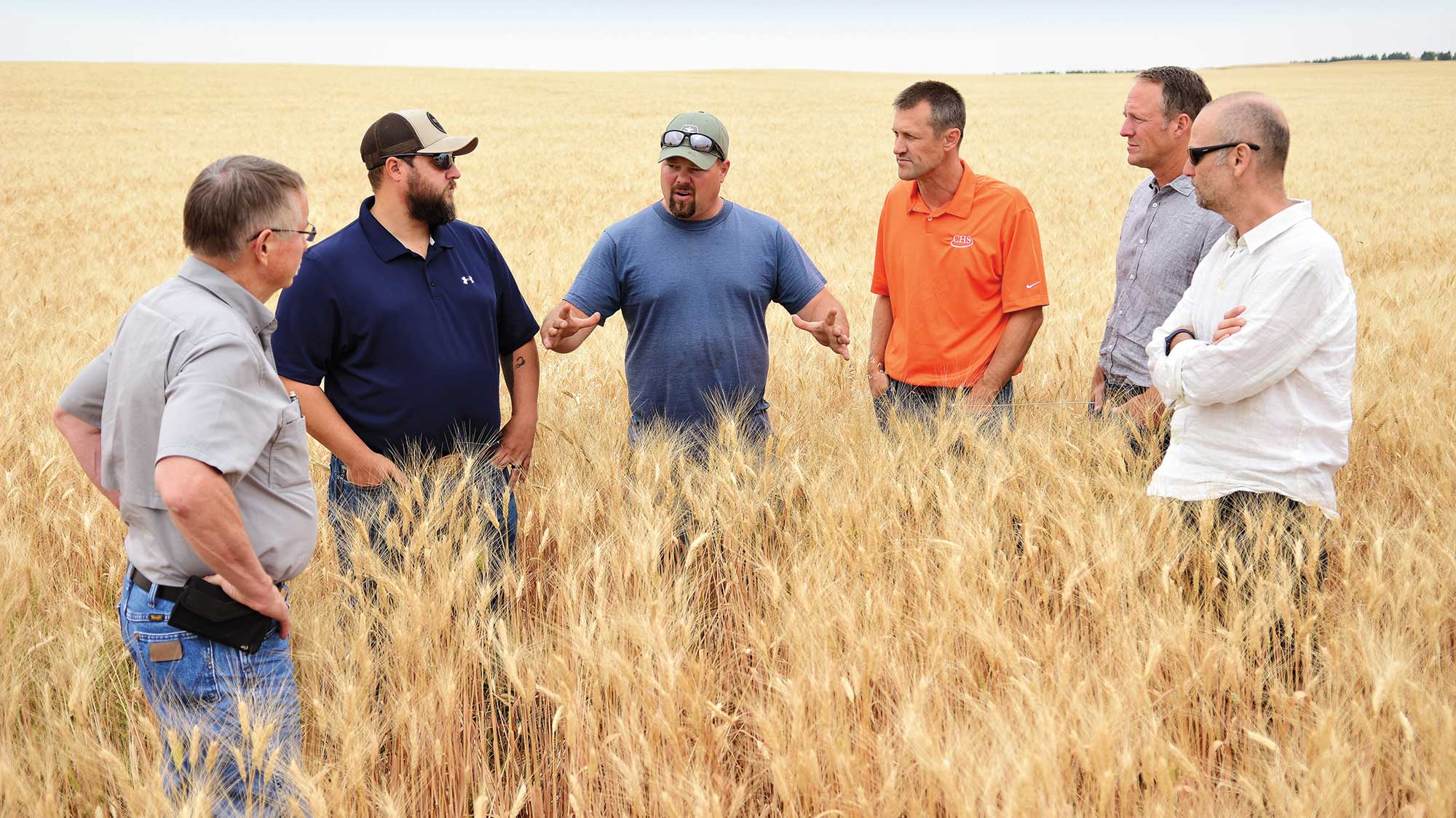 North Dakota farmer stands in a wheat field with his grain marketing team and global customers